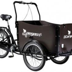 Bicicleta Pegas Cargo Adult 26x20, Roti 26inch, 3 Viteze (Negru) - Bicicleta de oras