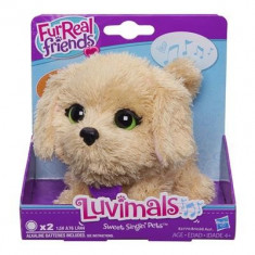 Jucarie De Plus Furreal Friends Luvimals Sweet Singin' Biscuit Hasbro