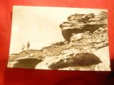Ilustrata Muntii Parang -Peisaj de la Ranca , circ. 1968