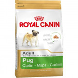 Royal Canin Pug (Mops) Adult 1.5 kg, Royal Canin