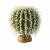 Barell Cactus Medium, Hagen