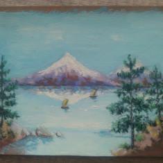Peisaj de munte cu lac// ulei pe carton, nesemnat
