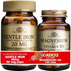 Pachet 1+1 Gratis: Gentle Iron (Fier) 20mg 90cps + Magnesium (Magneziu) cu B6 100 tablete Gratis - Supliment nutritiv