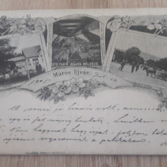 Ocna Mures, Alba 1907 mozaic floral, imagine multipla cp ilustrata - Carte Postala Transilvania 1904-1918, Circulata, Fotografie