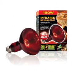Bec Infrared Basking Spot PT 2141 50 W Hagen