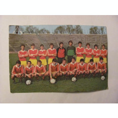CY - Echipa de Fotbal a Romaniei / Foto Aurel NEAGU