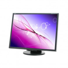 Monitor Refurbished LCD 21' NEC MULTISYNC LCD2170NX LUX - Monitor LCD