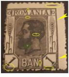 EROARE ROMANIA  1900 CAROL I , SPIC DE GRAU 1 BAN NEUZAT, PATA IN AFARA CADRU, Nestampilat