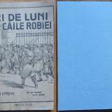 Oprisan , 21 de luni pe caile robiei , 1920 , Sighisoara , Cluj , editia 1