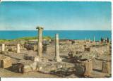 (A) carte postala(1135/12)-KRUGER-Dobrogea -Ruinele cetatii Histria