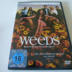 Weeds  - season two, DVD, Comedie, Engleza