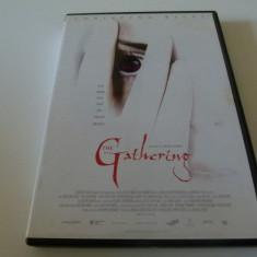 The Gathering - dvd, Engleza