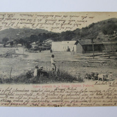 Rara! Carte postala(foto Fr.Duschek) Telega/Prahova 1905, Circulata, Printata