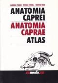 Anatomia caprei / Anatomia caprei foto