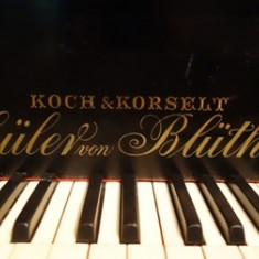 "Pian cu coada ""Koch&Korselt"""
