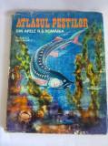 Atlasul pestilor din apele R.S. Romania- I. Alexandrescu, Ed. Ceres, 132  pag