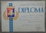 Diploma sportiva, volei// 1974