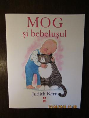 Mog si bebelusul - Judith Kerr foto