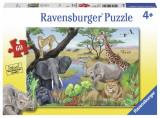 Puzzle animale safari, 60 piese, Ravensburger