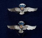 Insigne - insemne - semne de arma Parasutisti - Parasutism - Aviatie