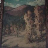 Pictura, Peisaje, Ulei, Altul