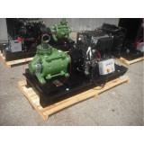 Motopompa Profesionala Lombardini LDW 2204 SKM 50/4