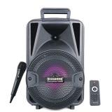 Boxa portabila Bluetooth Temeisheng X6 50w Karaoke , Microfon, USB, Radio