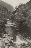 Vedere monocroma, 90 x 140 mm, circulata, valea Cernei, Baile Herculane, Fotografie