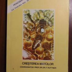 Cresterea matcilor - Prof. Dr. F. Ruttner (Apimondia, 1980) ORIGINALA