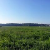 Cernica, Jud Ilfov 1000 mp intravilan, Teren intravilan