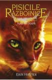 Pisicile Razboinice vol.12: Apus de soare - Erin Hunter, Erin Hunter
