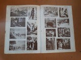 Planșe sepia Arta Românească, cu tablouri din colecția Cartea Românească