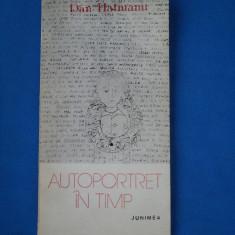 AUTOPORTRET IN TIMP / DAN HATMANU