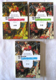 """DICTIONAR DE SIMBOLURI""- 3 Vol., Jean Chevalier, Alain Gheerbrant, 1994/1995, Alta editura"