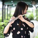 Flaut C 16 gauri Western Concert
