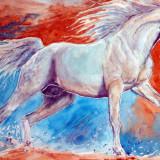 Acuarela studiu cal alb cu decor supra realist 35cmx27cm, Animale, Realism