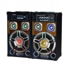 Boxe active Bluetooth USB, radio FM 60W
