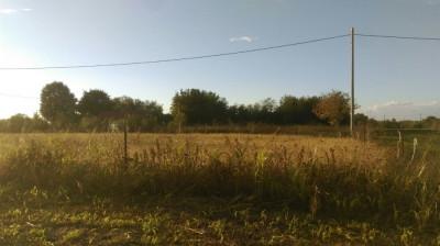 Teren intravilan sat Creata, comuna Dascalu, Ilfov foto