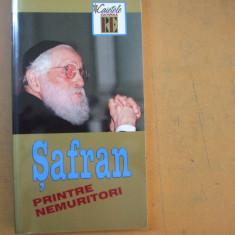 Safran printre nemuritori Bucuresti 2002 marelui rabin omagiu