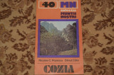 Muntii Cozia - Nicolae Popescu