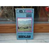 Birgau , Traian Naum , 1987