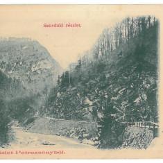 3473 - SURDUK PASS, Petrosani, Gorj, Romania, Litho - old postcard - used - 1903, Circulata, Printata
