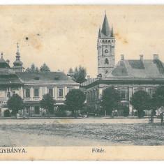 3620 - BAIA-MARE, Romania, Market - old postcard - used - 1909, Circulata, Printata