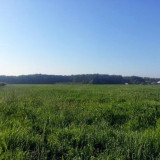 Teren 1000 mp intravilan in localitatea Cernica-livada, Jud Ilfov, Teren intravilan