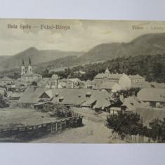Carte postala necirculata Baia Sprie-Maramures anii 20