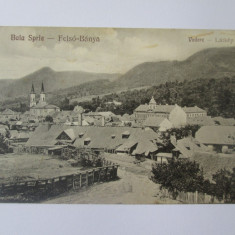 Carte postala necirculata Baia Sprie-Maramures anii 20, Printata