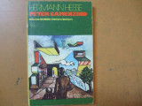 Peter Camenzind Herman Hesse Bucuresti 1975, Pavel Corut