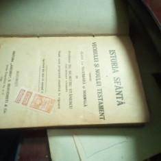Dumitru Stănescu - Istoria sfântă a vechiului sistem noului testament