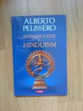 d1b Introducere in hinduism - Alberto Pelissero