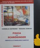 Pisica lui Schrodinger Corneliu Sofronie